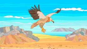 Le vautour de l'île de Socotra d'île dans les montagnes en pierre image libre de droits