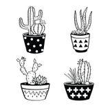 Le vecteur a placé avec les cactus et les succulents noirs et blancs dans des pots Photographie stock libre de droits