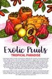 Le vecteur porte des fruits affiche exotique de croquis de fruit tropical Image libre de droits