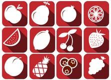 Le vecteur porte des fruits des icônes a placé - les illustrations saines fraîches illustration de vecteur