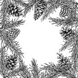 Le vecteur tiré par la main de cône d'arbre et de pin de sapin ajustent le cadre pour l'hiver Photos libres de droits