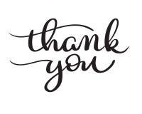 Le vecteur tiré par la main vous remercient de textoter sur le fond blanc Illustration EPS10 de lettrage de calligraphie illustration stock