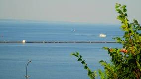Le vele dell'yacht sul mare Sull'orizzonte è la città visibile video d archivio