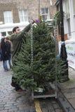 Le vendeur vend des arbres de Noël sur le marché de fleur de Colombie Photo stock