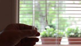 Le veneziane della finestra vicino e poi si aprono con i fiori ed il cielo blu fuori stock footage
