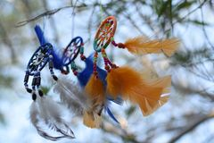 Le vent est développé par les dreamcatchers suspendus sur un arbre Images libres de droits