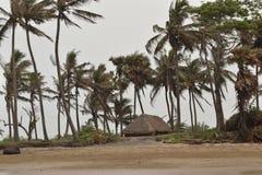 Le vent et la hutte Photos libres de droits