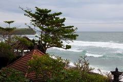 Le vent secoue les arbres et attrape une vague dans l'océan Image libre de droits