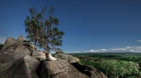 Le vent souffle le bride& x27 ; robe de s tandis qu'elle se tient avec le marié photo stock