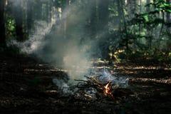 Le vent souffle sur des charbons photographie stock libre de droits