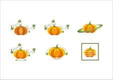 Le verdure arancio della zucca di frutti della zucca lascia il logo fresco dell'icona della pianta del raccolto di Halloween Immagini Stock Libere da Diritti