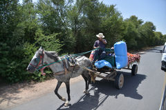 Le verdure di trasporto dell'agricoltore su un carretto hanno tirato dal cavallo-Marocco Fotografia Stock