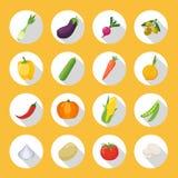 Le verdure hanno colorato l'insieme del piano dell'icona illustrazione vettoriale