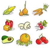 Le verdure hanno impostato Immagine Stock Libera da Diritti