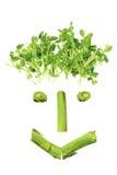 Le verdure hanno organizzato nella figura del fronte fotografia stock