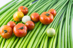 Le verdure, il pomodoro e la erba cipollina di aglio organici freschi astratti scorrono immagini stock
