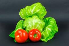 Le verdure sono il migliore alimento per non solo vegetariano ma per ognuno che gradisca l'alimento sano Fotografia Stock