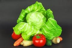 Le verdure sono il migliore alimento per non solo vegetariano ma per ognuno che gradisca l'alimento sano Immagine Stock Libera da Diritti