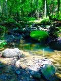 Le verger de rivières Images libres de droits