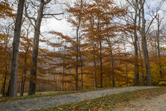 Le Vermont pendant l'automne Photographie stock libre de droits