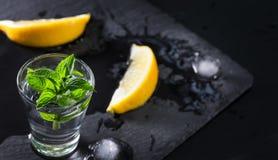 Le verre de genièvre ou de vodka avec la menthe a fondu la glace et le citron photo stock