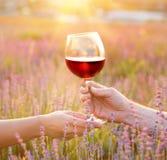 Le verre de vin contre le paysage de lavande dans le coucher du soleil rayonne Photo libre de droits