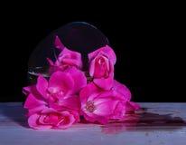 Le verre de vin a incliné plus d'avec un bouquet des roses roses sortant photos stock