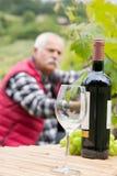 Le verre et la bouteille wine chez l'homme et les vignes de premier plan à l'arrière-plan Image stock