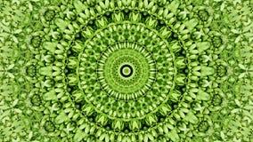 Le vert abstrait sans couture laisse le fond Image libre de droits