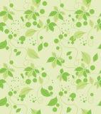 Le vert abstrait sans couture laisse le modèle Photo stock
