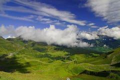 Le vert alpestre Photo libre de droits