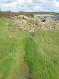 Le vert amarrent et des roches Photos libres de droits