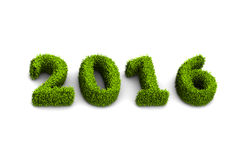 le vert de la nouvelle année 2016 a engazonné le concept d'isolement sur le fond blanc Photo stock
