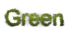 Le vert de mot a tapé par les fleurs et l'herbe photo libre de droits