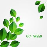 Le vert de source laisse le fond Disparaissent le concept vert Images libres de droits