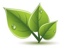 le vert de vecteur laisse la conception d'eco Image libre de droits