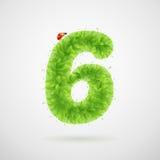 Le vert laisse l'alphabet avec la coccinelle Été d'écologie Numéro 6 Photo libre de droits