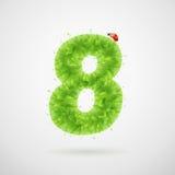 Le vert laisse l'alphabet avec la coccinelle Été d'écologie Numéro 8 Photo stock