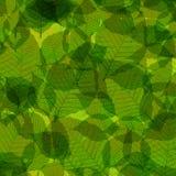 Le vert laisse l'illustration Photo libre de droits