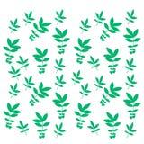 Le vert laisse le modèle sur le fond blanc Photographie stock libre de droits
