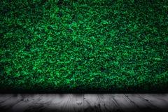 Le vert laisse le mur naturel avec le fond en bois de plancher image libre de droits