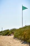 Le vert, le drapeau laisse Photos stock