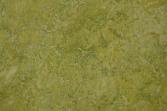 Le vert a marbré le plancher couvert par linoléum Photographie stock