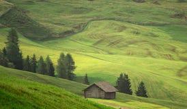 Le vert met en place la vue aérienne avant récolte à l'été Photo libre de droits