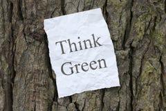 le vert pensent Photos libres de droits