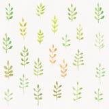 Le vert sans couture d'aquarelle laisse le modèle illustration de vecteur