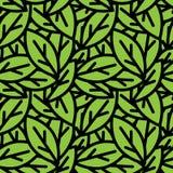 Le vert sans joint laisse la configuration Images stock
