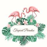 Le vert tropical de paradis laisse le flamant de fleurs illustration de vecteur