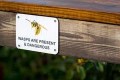 Le vespe sono presenti e pericolose Fotografie Stock Libere da Diritti
