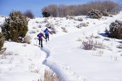 Le viandanti della racchetta da neve salgono a una collina Fotografia Stock